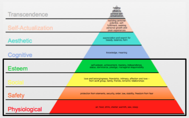 Maslow's Hierarchy_Lower Order Coping